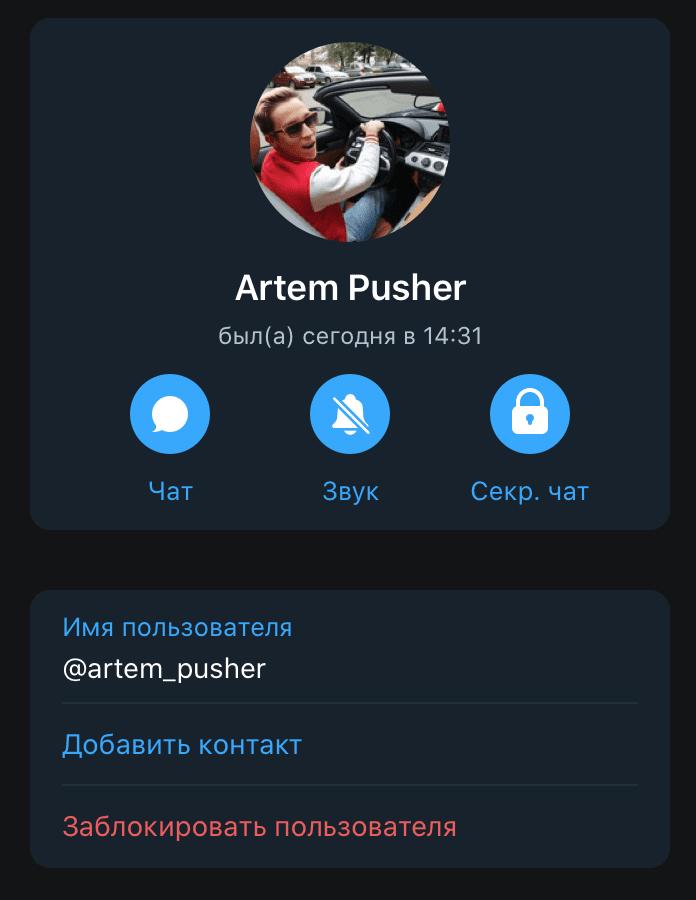 Личная телеграм страничка основателя проекта Пушер Дарит (Пушер Мани)