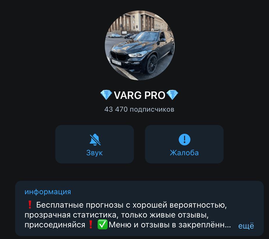 """Телеграм канал Дмитрия Варгунина (Основателя Team """"VARG"""")"""