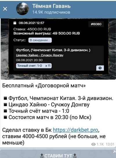 Специализация проекта Темная гавань