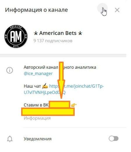 Информация о Телеграмм канале American Bets