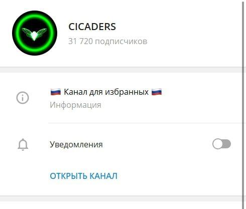 Телеграмм канал CICADERS
