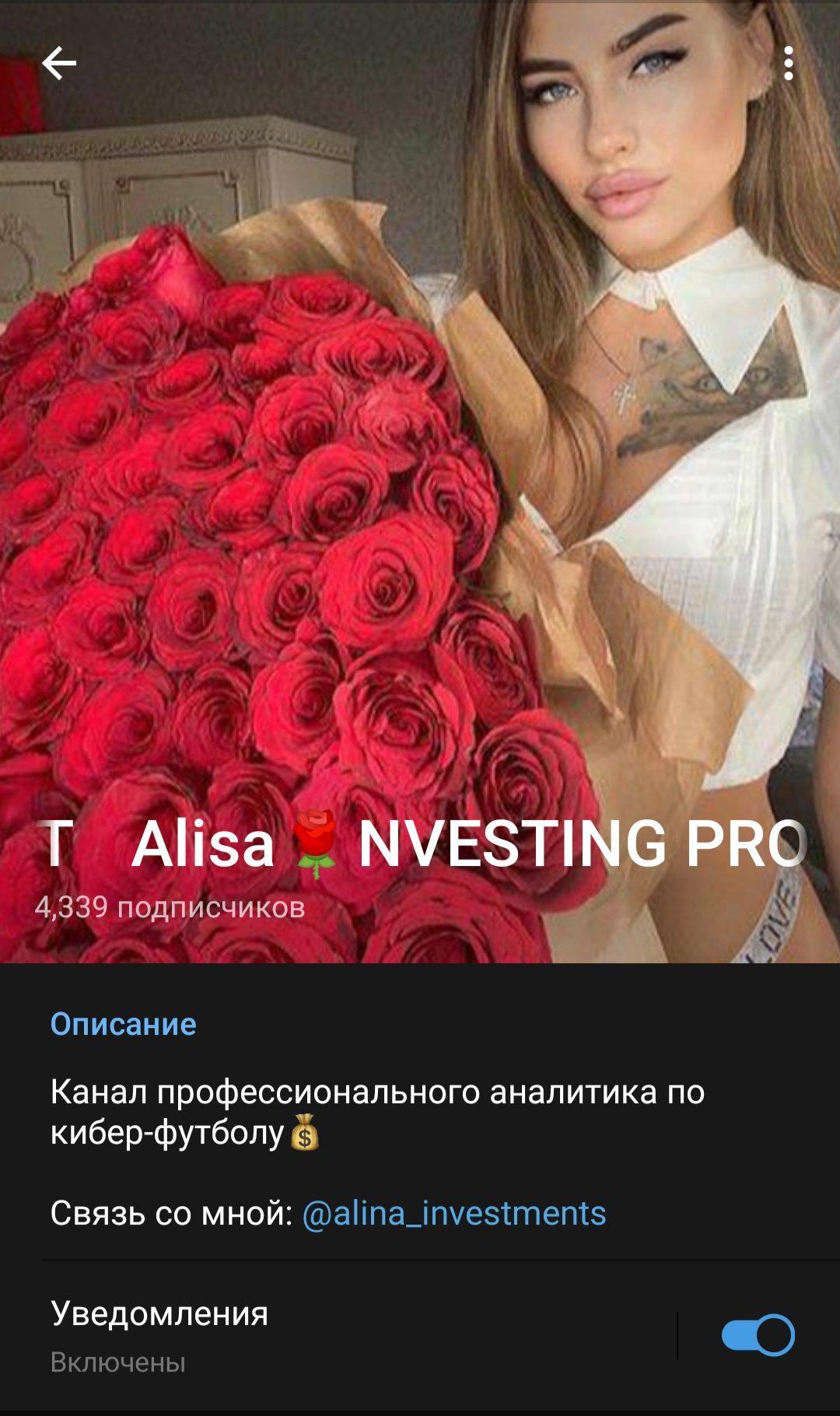 Телеграмм Alisa Investing Project