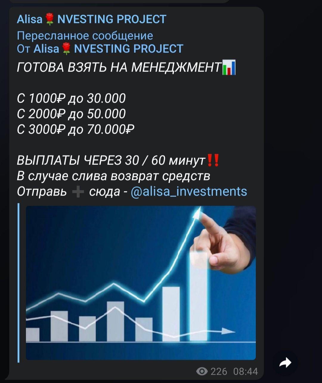 Телеграмм alina investments